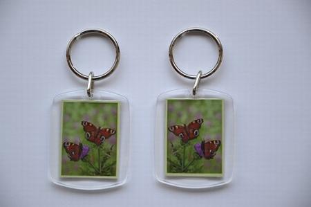 Sleutelhanger DZ: Distel met vlinders