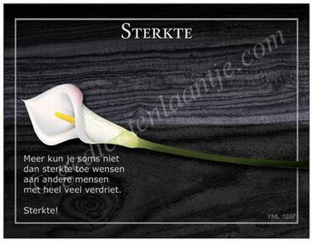 Gedichtkaart YML 1037: Sterkte