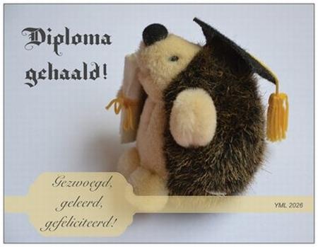 Gedichtkaart YML 2026: Diploma gehaald