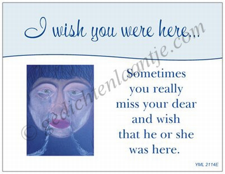 Gedichtkaart YML 2114: I wish you were here...