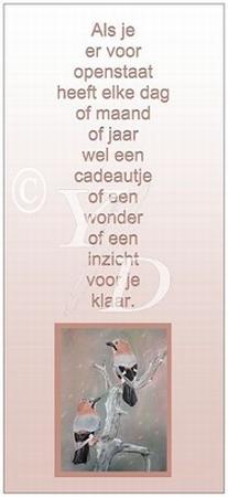 Boekenleggerkaart Y/D 004: Als je er voor openstaat