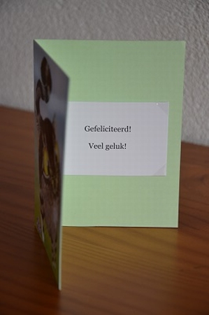 Dubbele kaart Y/D 0003: Gefeliciteerd! Veel geluk!