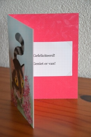 Dubbele kaart Y/D 0017: Gefeliciteerd! Geniet er van!