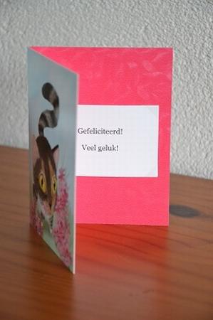 Dubbele kaart Y/D 0019: Gefeliciteerd! Veel geluk!