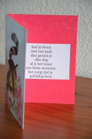 Dubbele kaart Y/D 0033: Leef je leven met een lach