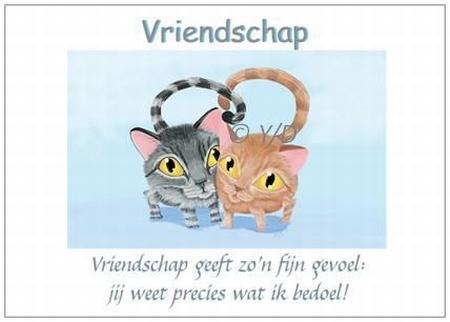 Gedichtkaart Y/D 002: Vriendschap