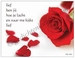 Gedichtkaart YML 2503: Lief