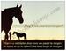Gedichtkaart YML 1688: Mag ik uw paard verzorgen?